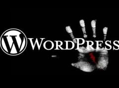 注意啦!wordpress盗版主题中可能存在后门!