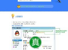 真假QQ客服验证系统源码免费分享