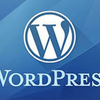 WordPress登录返回登录前浏览页面