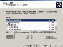 Windows 2003服务器 IIS配置与Ftp配置搭建