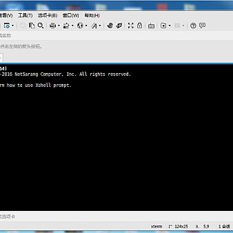 xshell 5下载(含注册码)5.1.1337 破解版