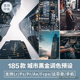 LUT预设LR工业风城市黑金街拍夜景人像PR/FCPX达芬奇AE调色PS滤镜