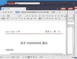 WPS2019 专业增强版v11.8.6.8810免激活版