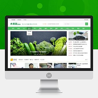 绿色清新两性健康养生知识门户网站源码