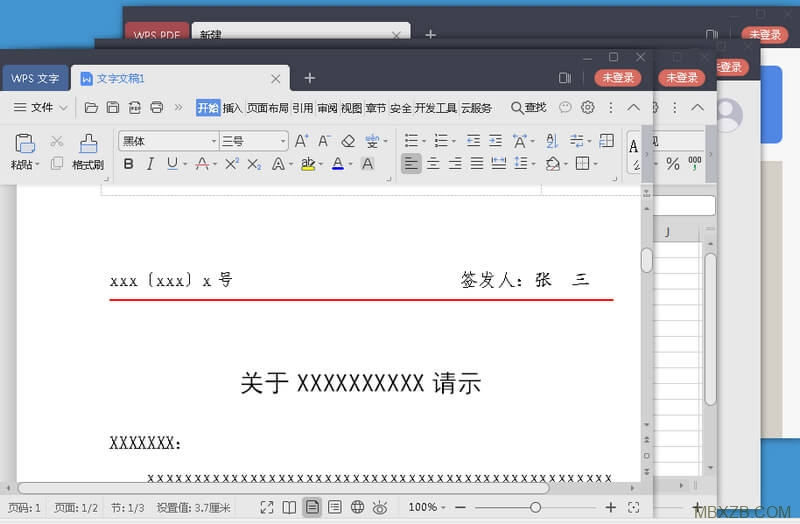 WPS Office Professional Plus